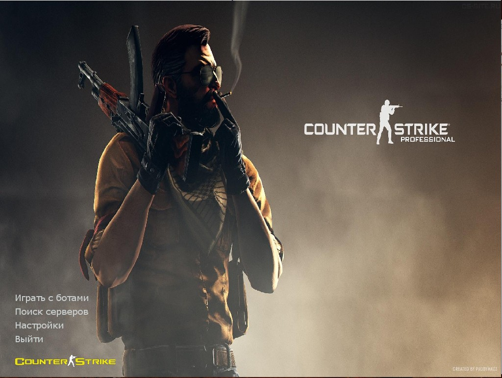 Counter Strike 1.6 Professional
